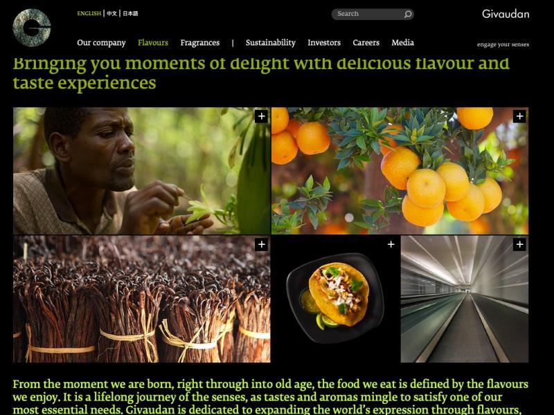 Flavours & Fragrances