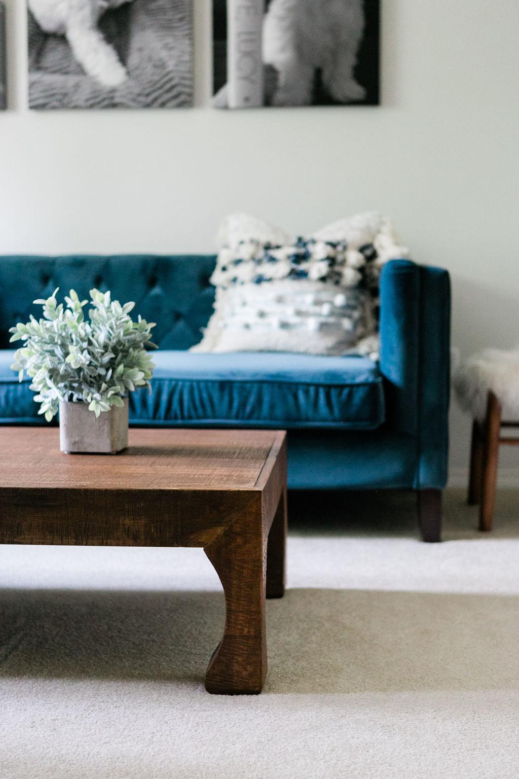 A raw wood coffee coffee table, a tufted felt navy blue sofa and a throw pillow with tassels.
