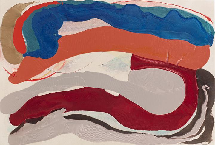 """CEPHALOPOD, 2011, A crylic on Canvas,  41"""" x 60"""""""