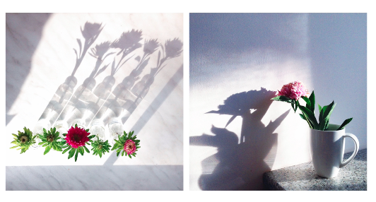Mariya Popandopulo shows examples of how she uses shadows in her photos.