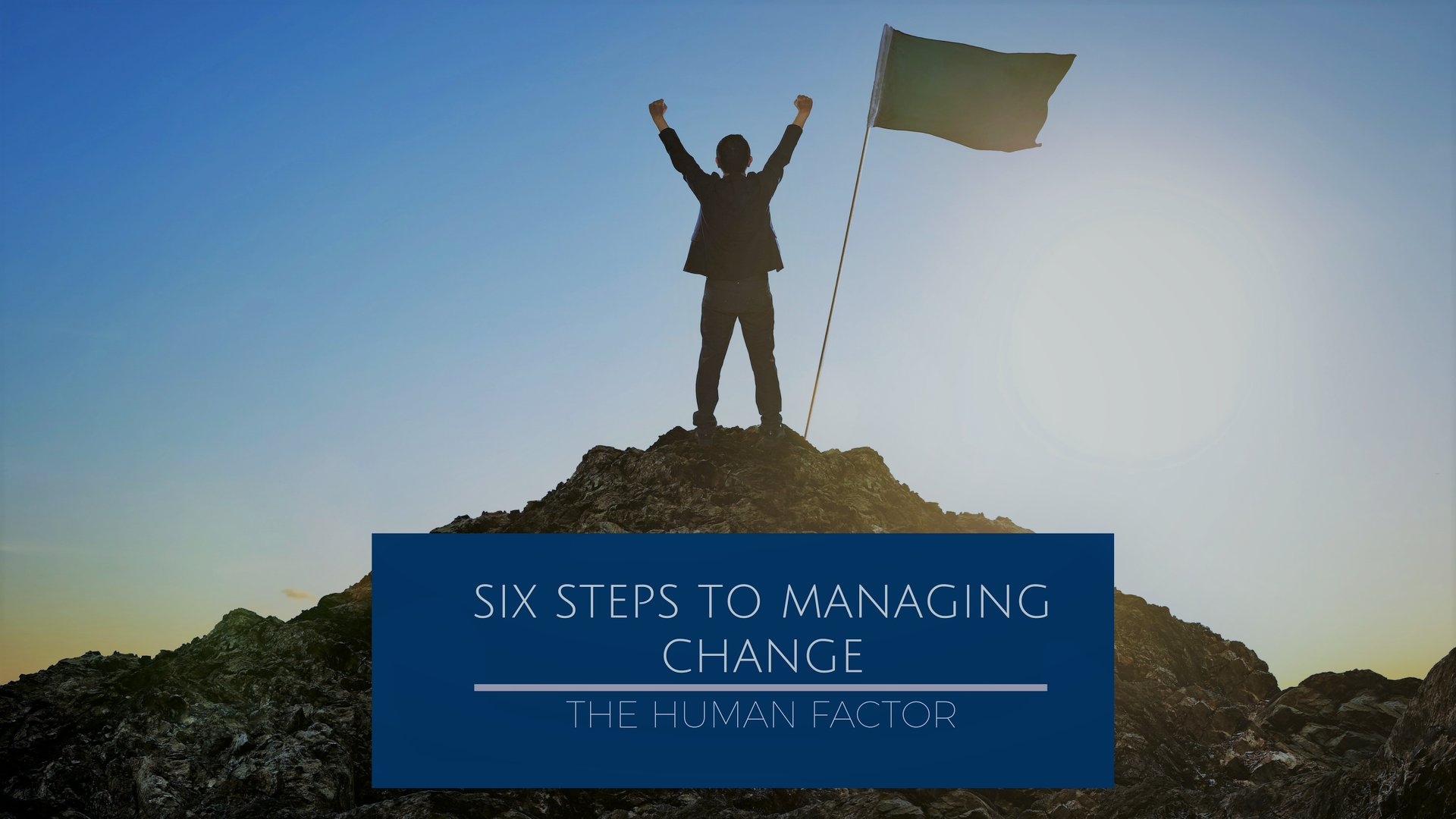 Successfully plan (and execute!) change initiatives with Dani