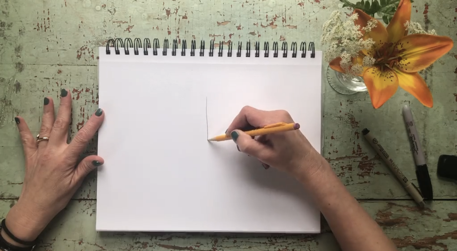 An amazing butterfly drawing starts with one simple line.