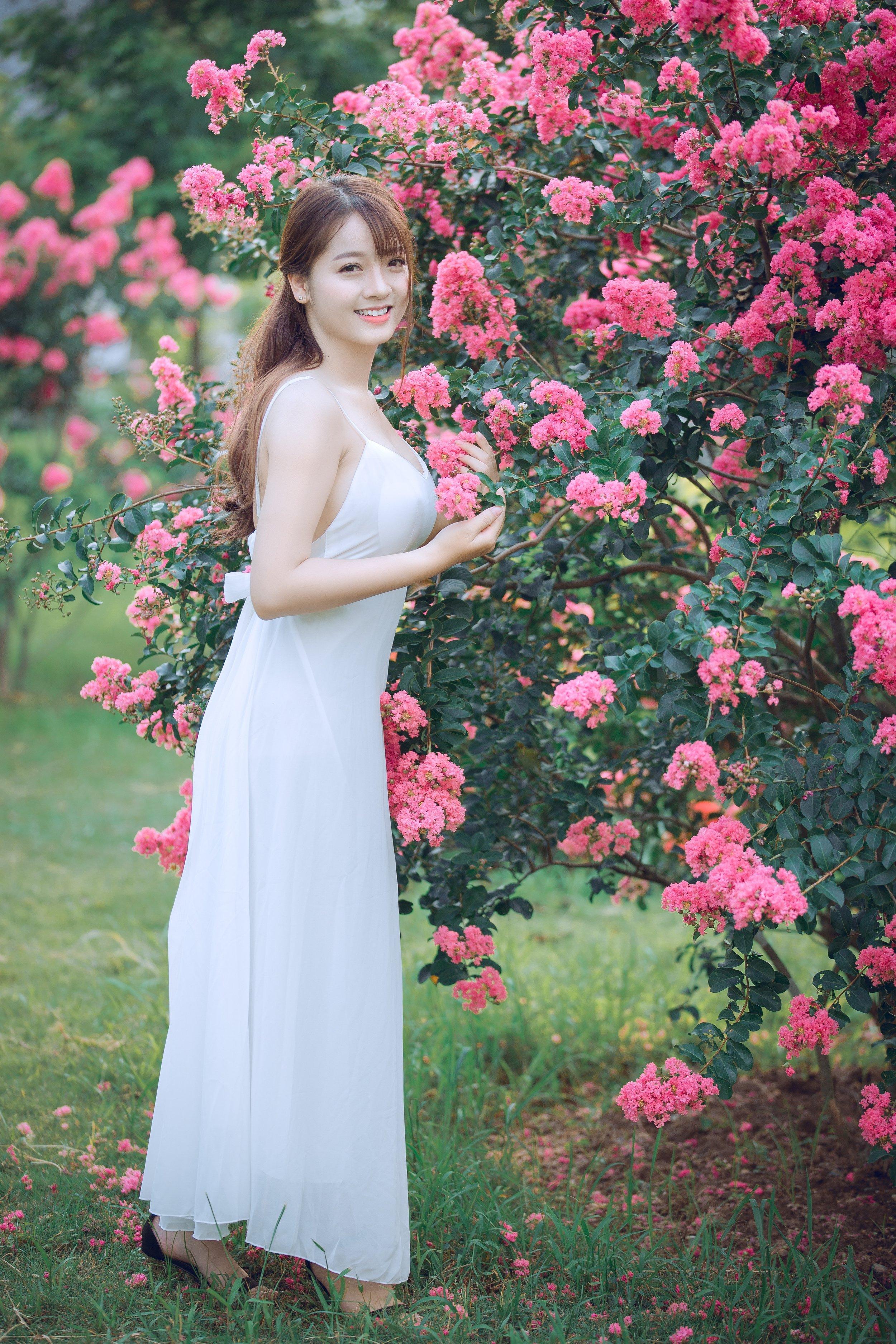 beautiful-bloom-blossom-1406764.jpg