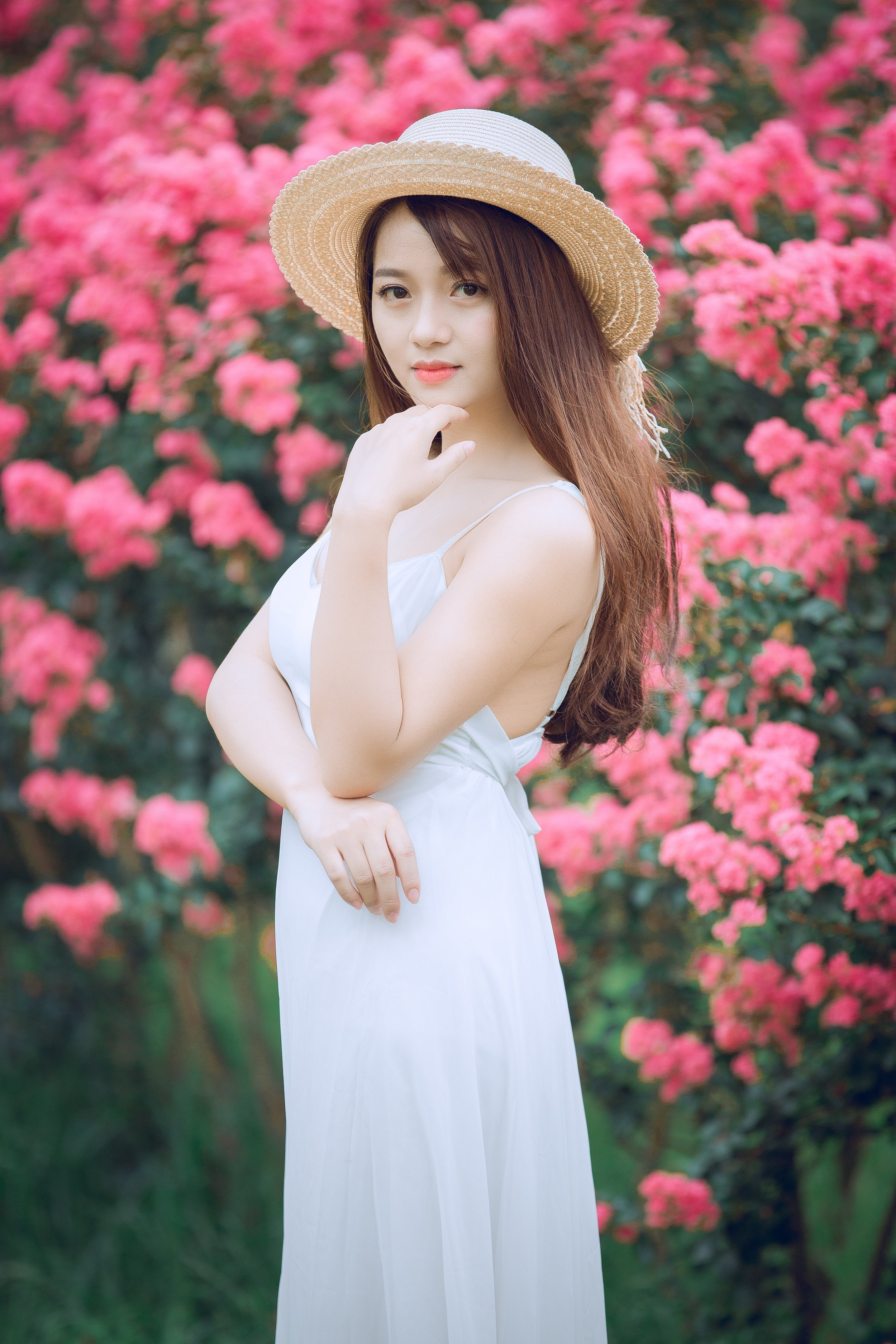 beautiful-bloom-blossom-1406765.jpg