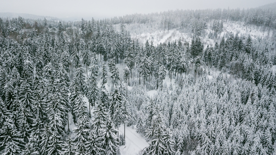 Thuringian Forest from above by drone // German Christmas Markets and Beyond: A Trip to Thuringia in December