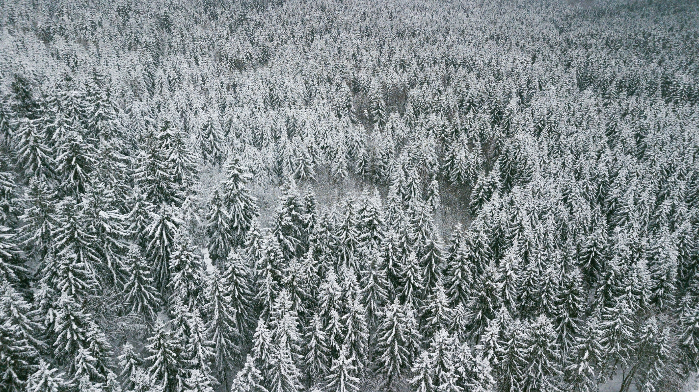 Droning above the Thuringian Forest // German Christmas Markets and Beyond: A Trip to Thuringia in December