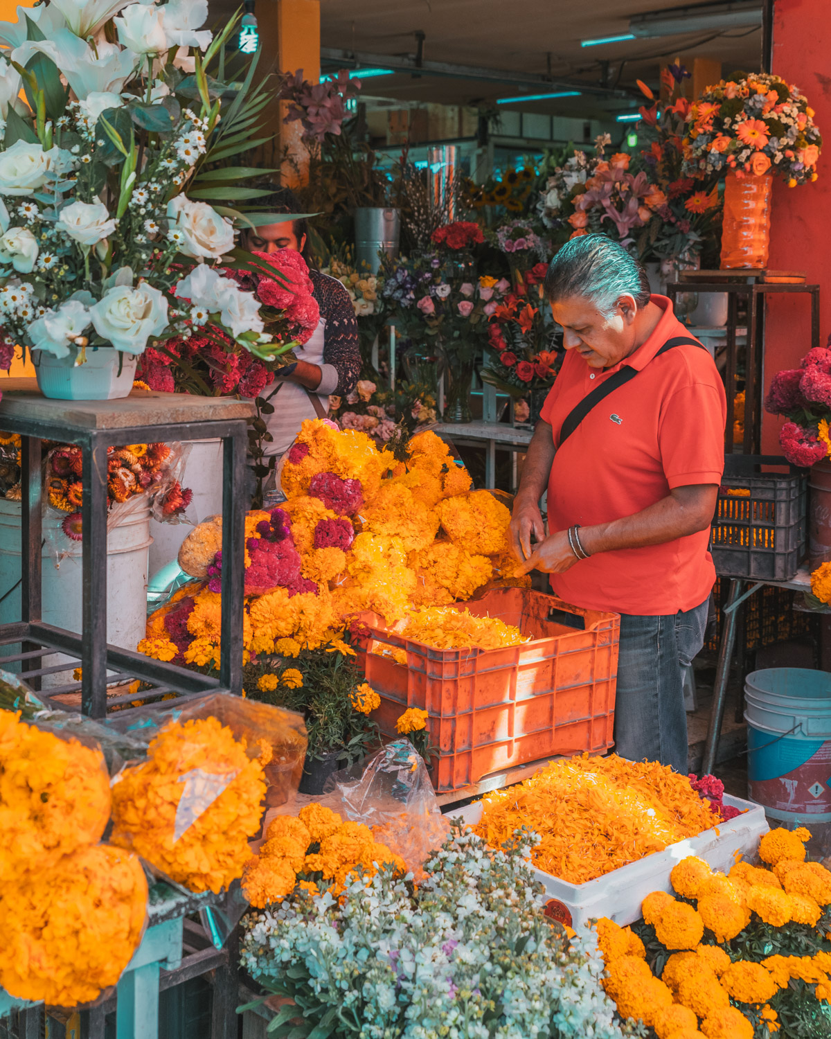 Marigolds at the market // What to Do In Mexico City for Day of the Dead // www.readysetjetset.net #readysetjetset #mexicocity #dayofthedead #traveltips #blogtips