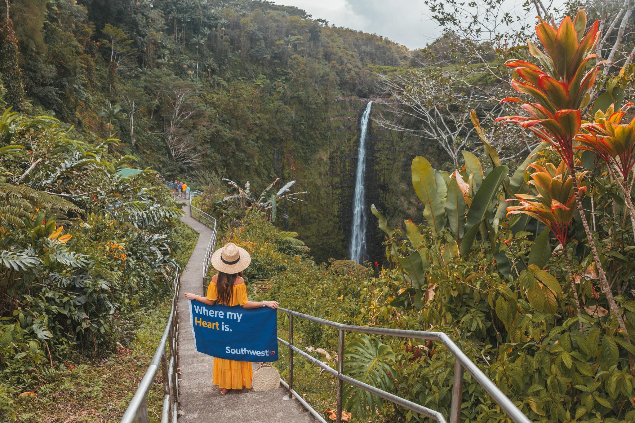 Akaka Falls  // 10 Things You Have to Do on the Big Island of Hawaii // www.readysetjetset.net #readysetjetset #hawaii #bigisland #blogpost #hawaiiguide