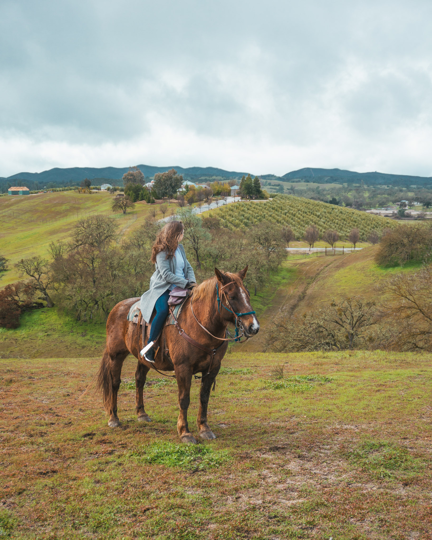 Central Coast Trailrides ~ The Most Instagrammable Spots in SLO CAL County ~ #readysetjetset #slocal #california #blogpost #travel #sanluisobispo