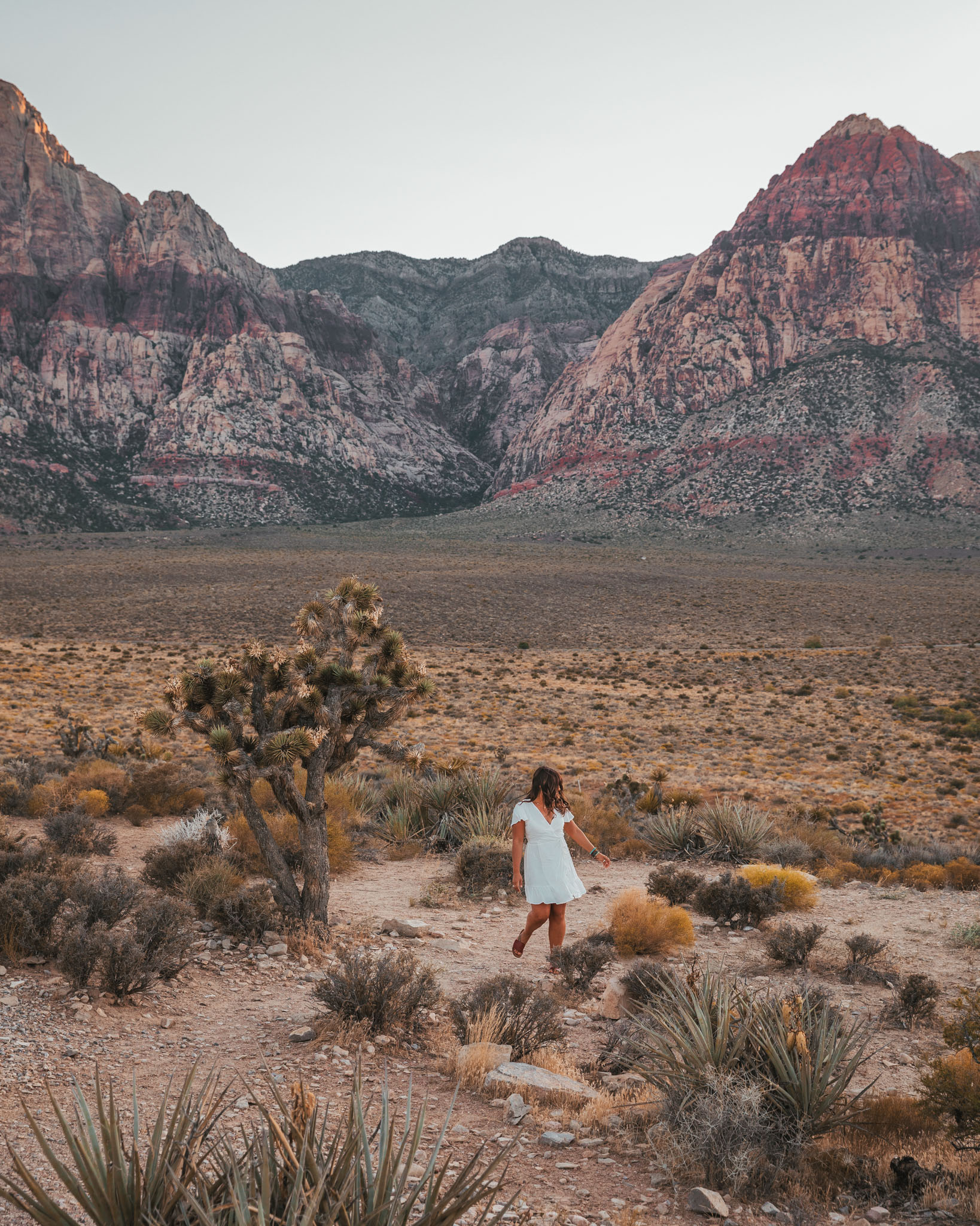 Red Rock Canyon // The Quick Guide to Visiting Vegas Beyond the Strip #readysetjetset #lasvegas #outdoors #nevada #adventure #blogpost #travel