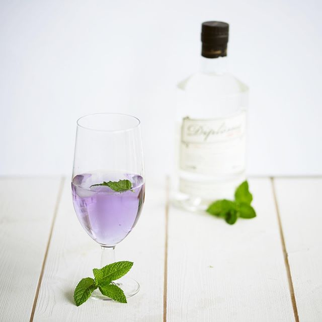 Purple cocktail.  2 oz Diplome Gin 1⁄2 oz Maraschino liqueur 1⁄4 oz Crème de violette 3⁄4 oz Fresh lemon juice 🍸Nolwenn Le Hir #diplomegin #madeinfrance🇫🇷 #since1945