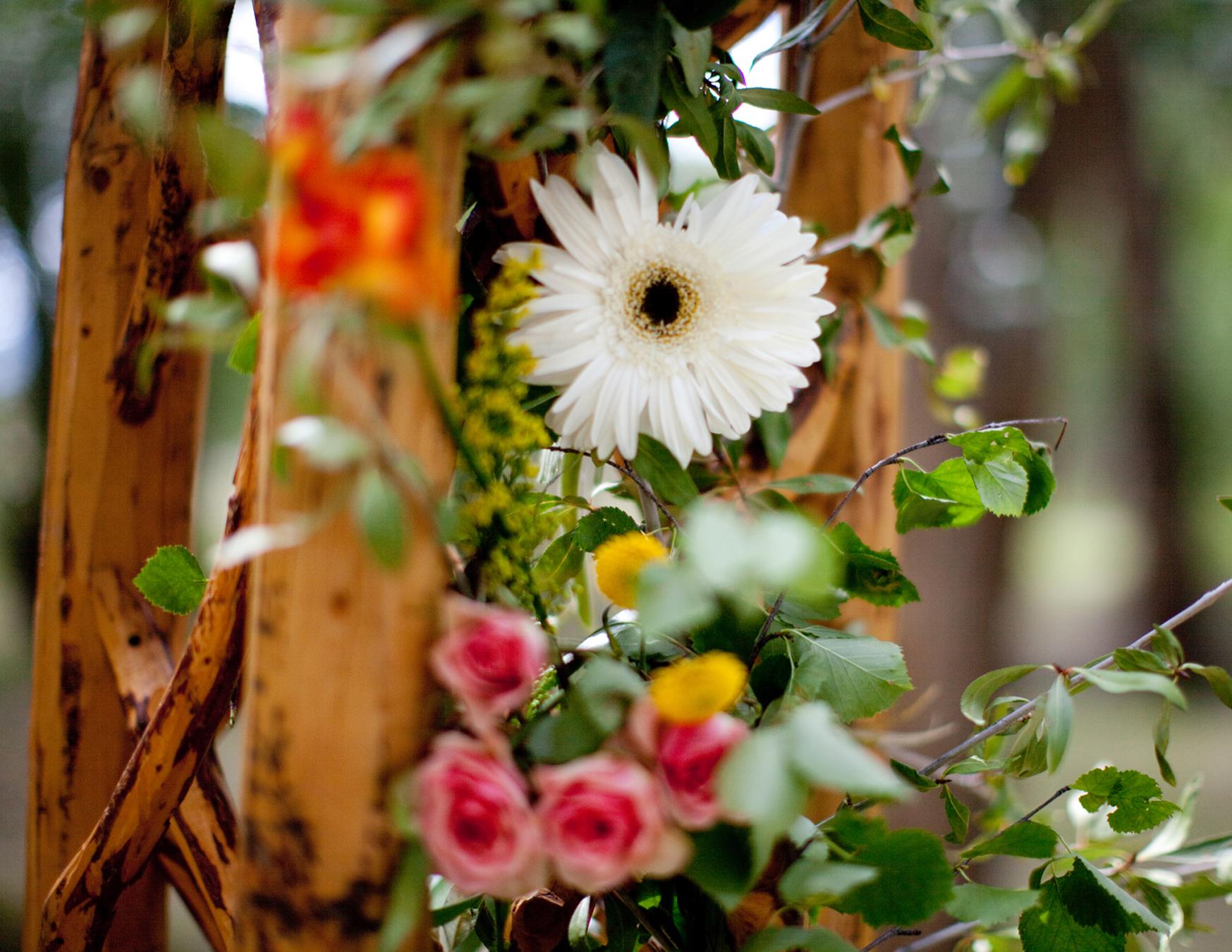 Flowers4.jpg