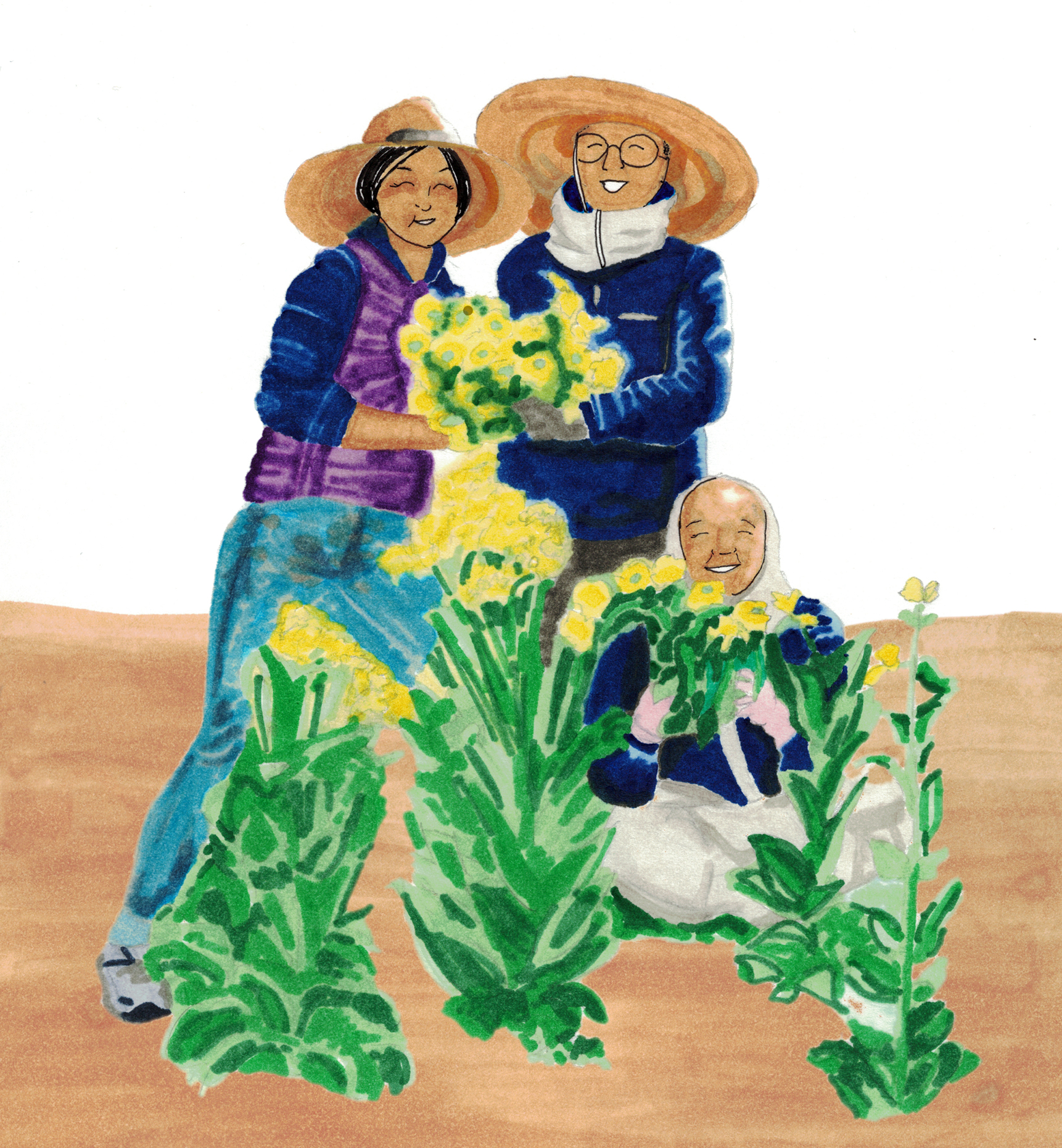 Shin (left) harvests cabbage flowers with  Jeong Kwan (seated) and   Myo Jin (middle) at the Chunjinam hermitage in South Korea.
