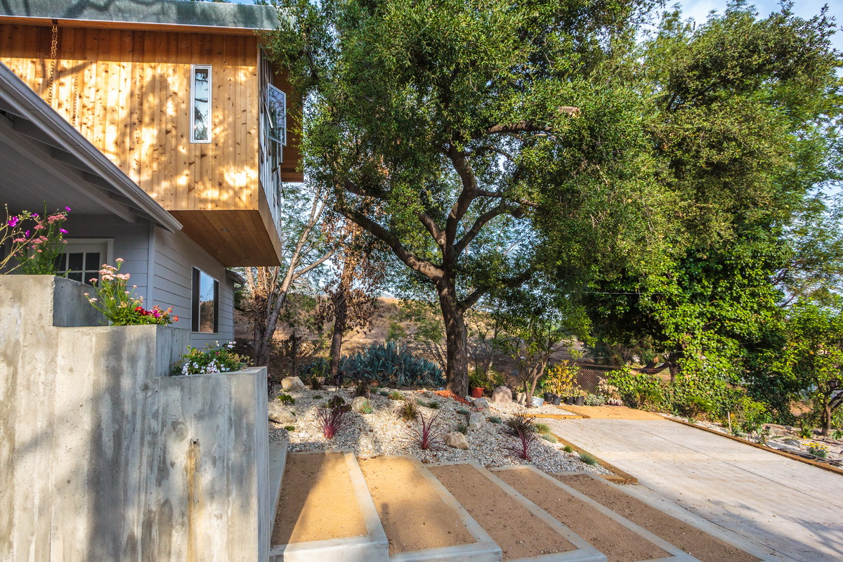 A view of the entry illustrating the relationship of the cantilevered bedroom to the oak tree and the new landscaping and entry sequence below.