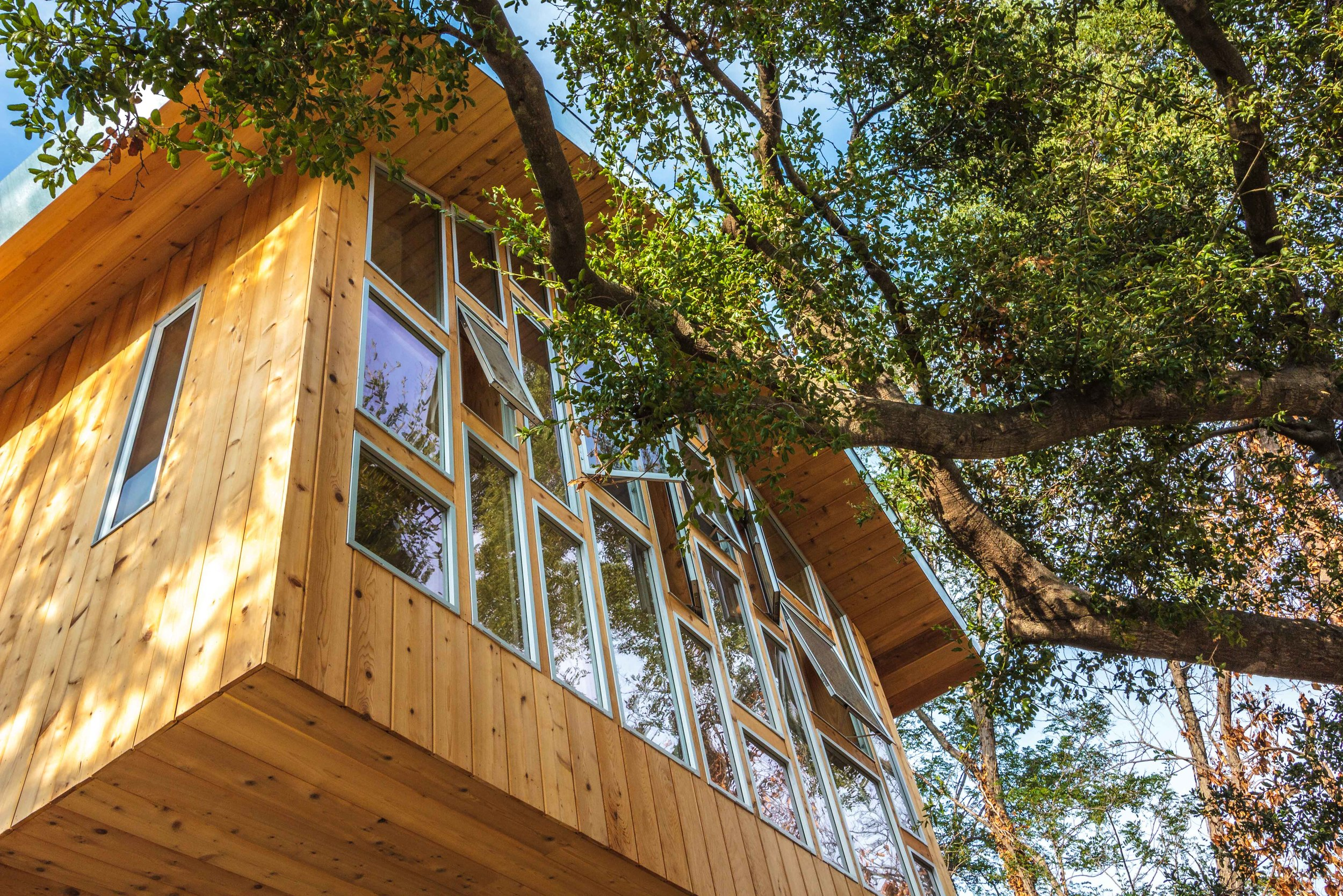 The glass wall is operable to provide natural cooling and enhance the sense of being in the tree.
