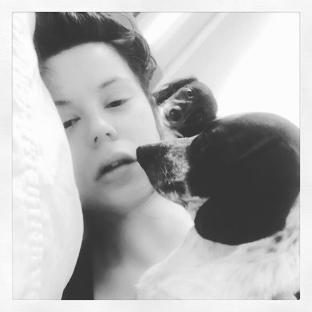 Imagine being lucky enough to wake up to these perfect species every morning. 👀😍 #blackandwhite #dachshundsofinstagram