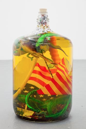 Hex-to-ward-off-reptilian-brainwashing-Lazaros-captial-gallery-334x500.png