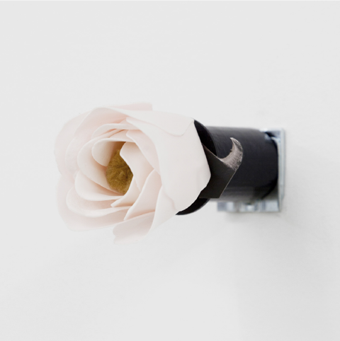 Naoki-Sutter-Shudo-Disagreeable-Rose-Bodega.png