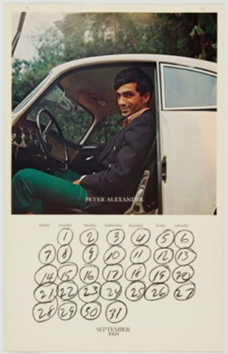 L.A.-Artist-in-their-Cars-Joe-Goode-Alden-Projects2-323x500.png