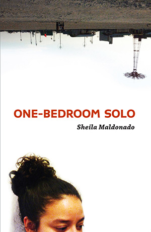 One-Bedroom Solo