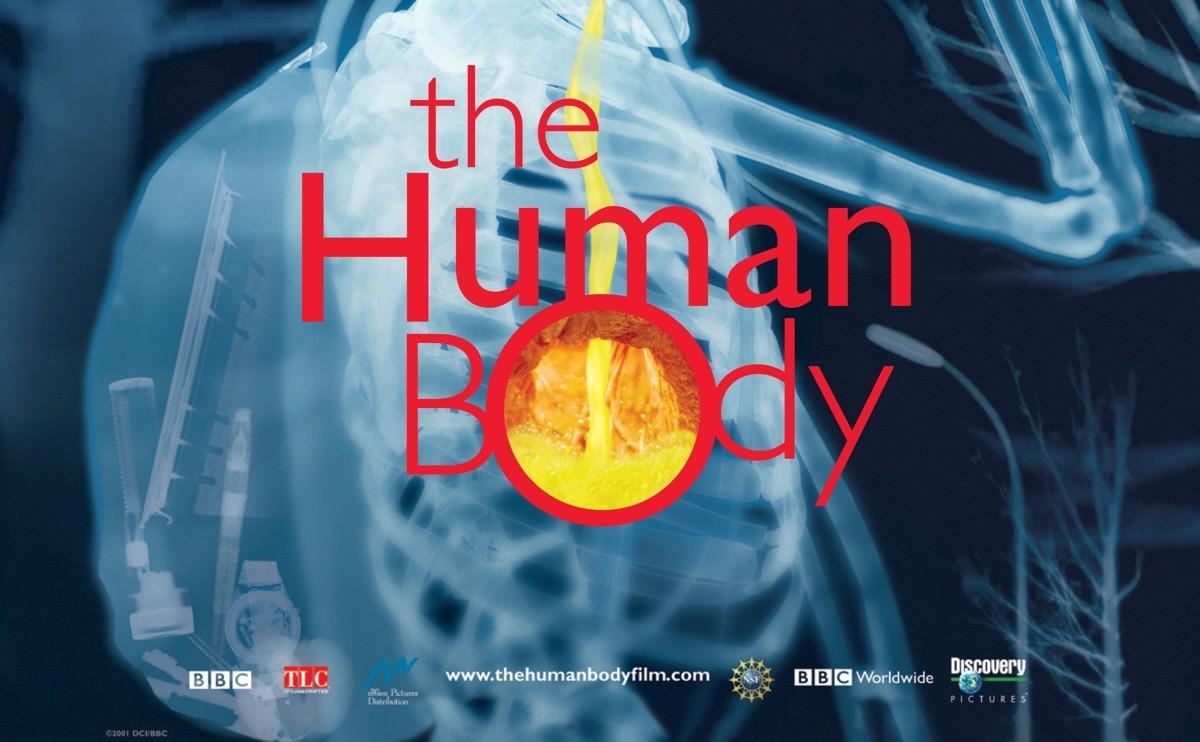 The Human Body movie