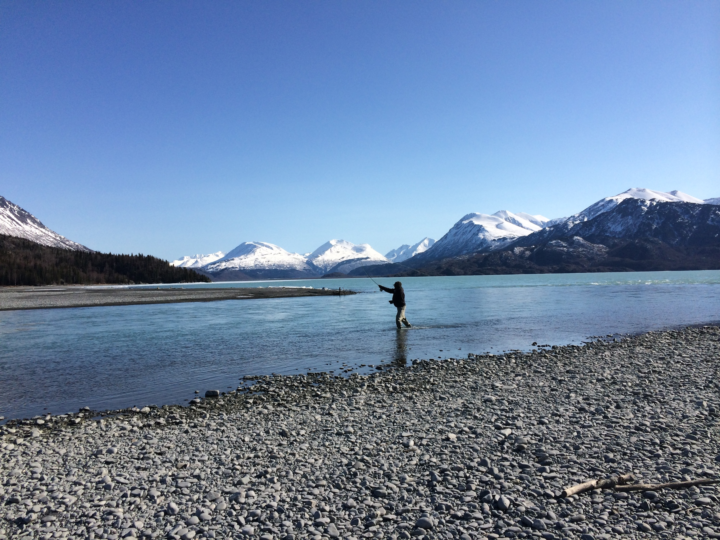 Pat Wolfe fishes for rainbow trout at the mouth of the Kenai River. Skilak Lake, Alaska. (Photo by Emily Stifler Wolfe)
