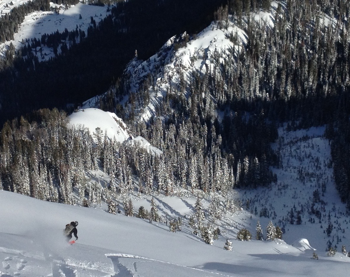 Brother Pallister lapping up the goods on the Fin. Cooke City, Montana. (Photo by Emily Stifler Wolfe)
