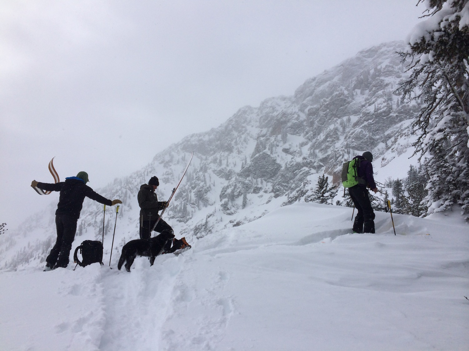 Boys, snow, wind, skis and a powder hound. What more could a girl ask for? (Photo by Emily Stifler Wolfe)