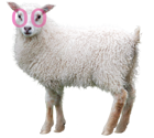 Studio KS Sheep Mascot