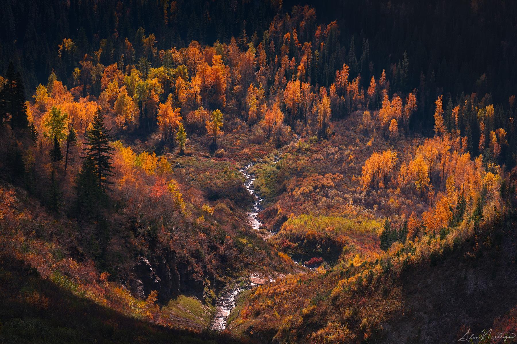 Autumn Amphitheater