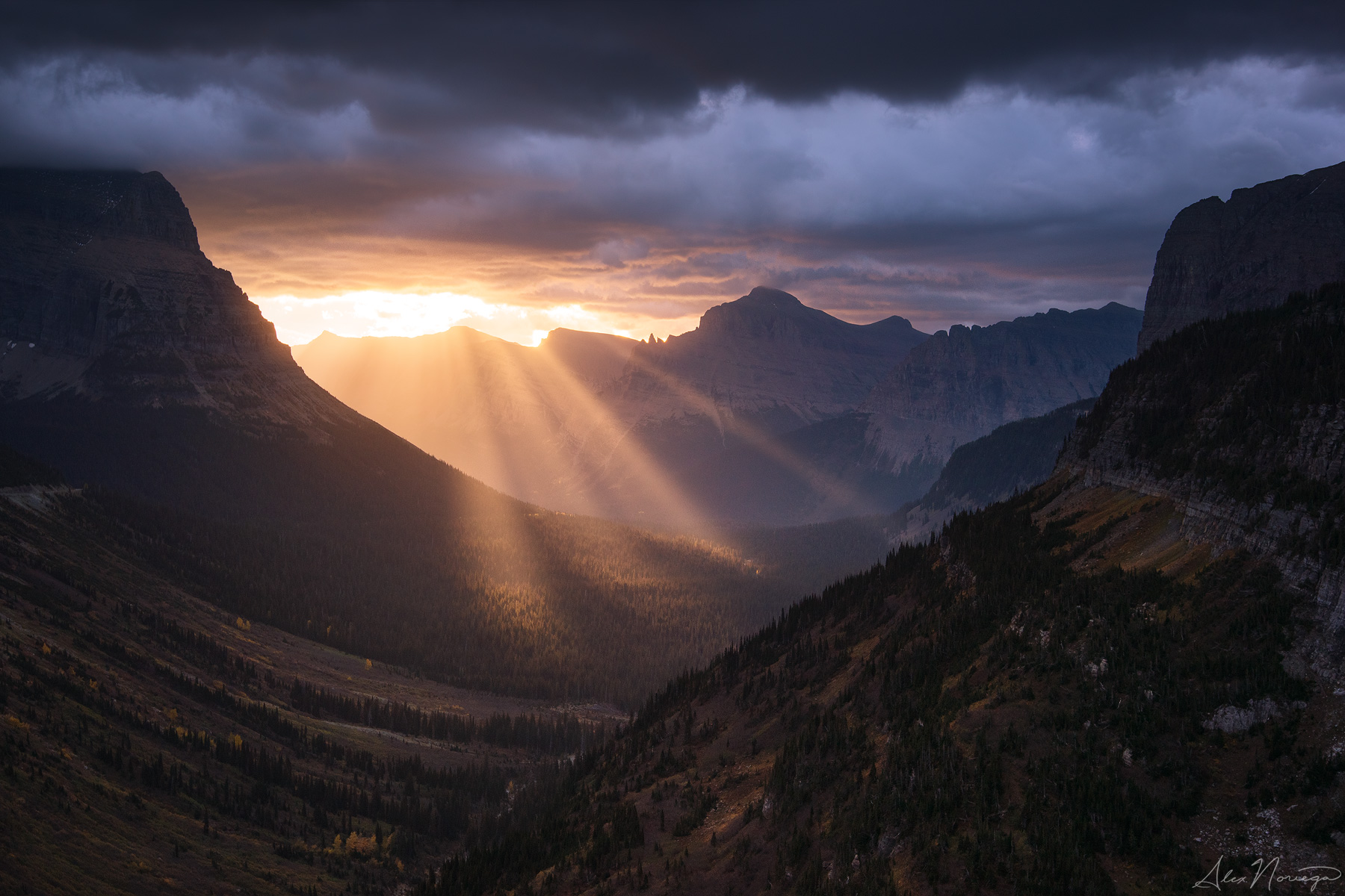 Prelude of Light