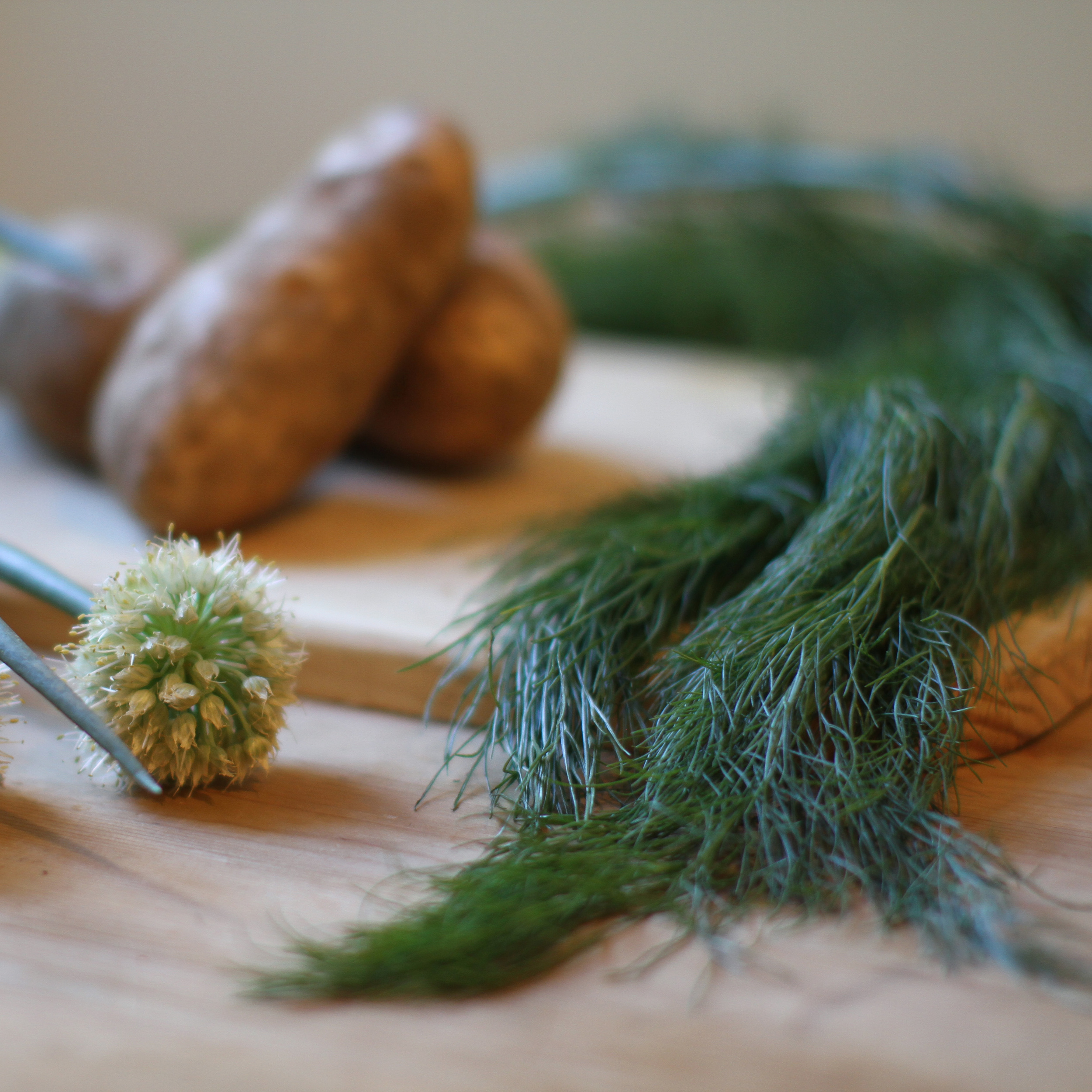 fennel_ingredients.jpg