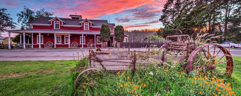 Casini-Ranch-Wagon-Flowers-Barn_IMG_0239.jpg