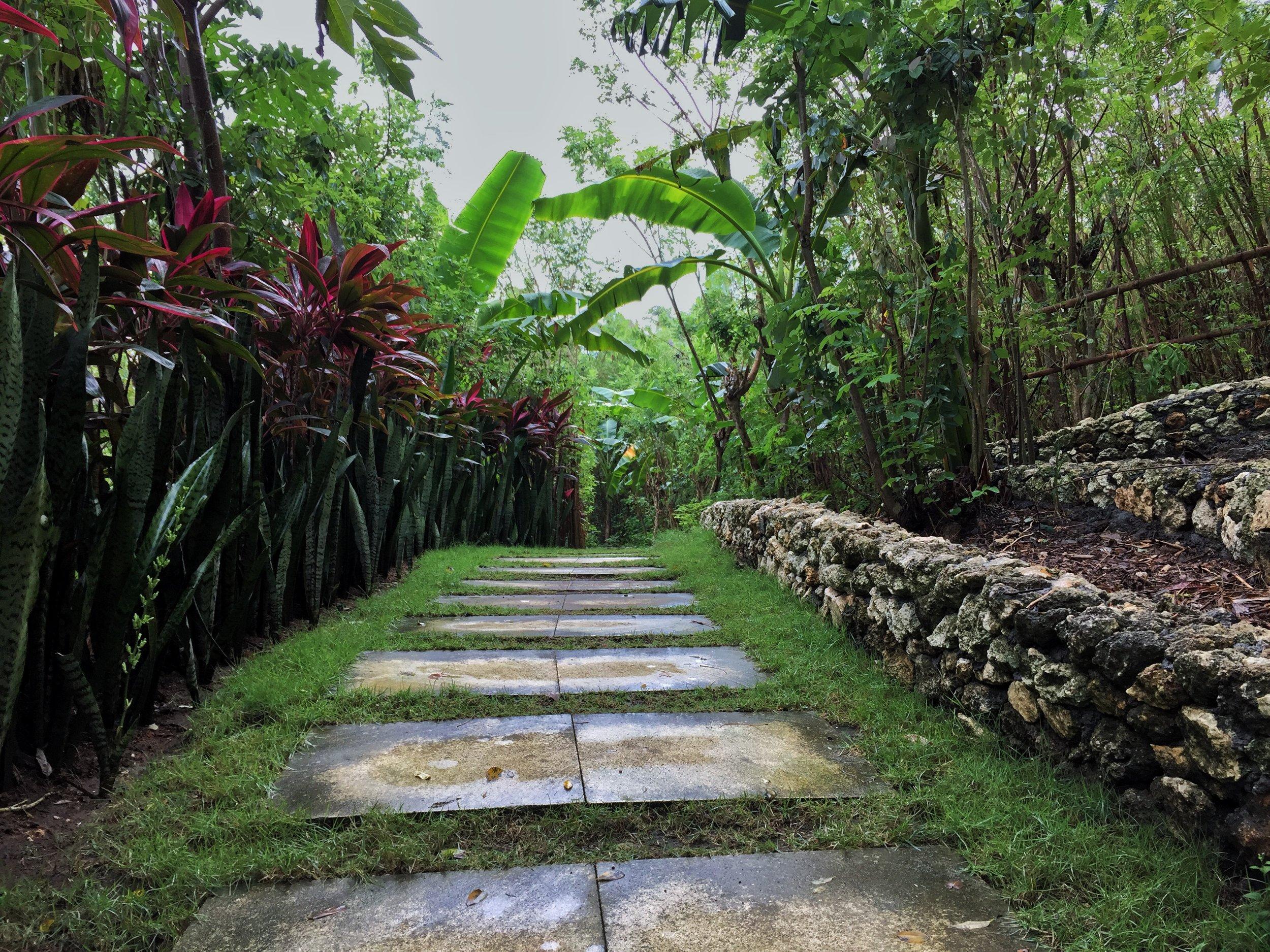 A beautiful trail in uluwata