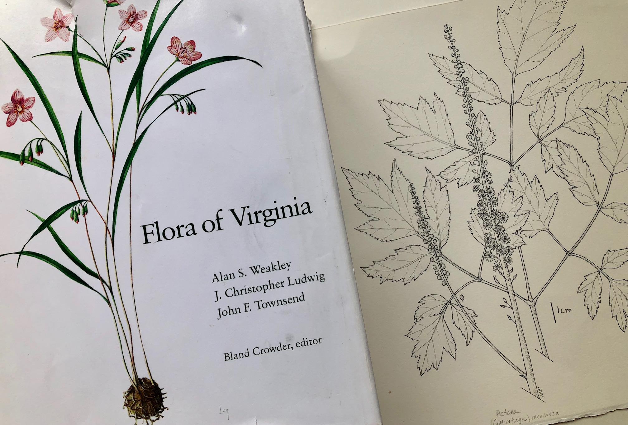 florabook.jpg
