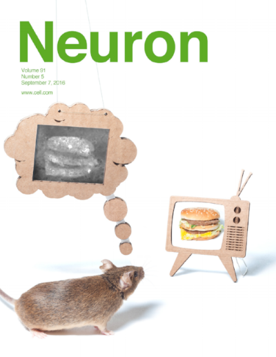 neuron-cover-final-green.jpg