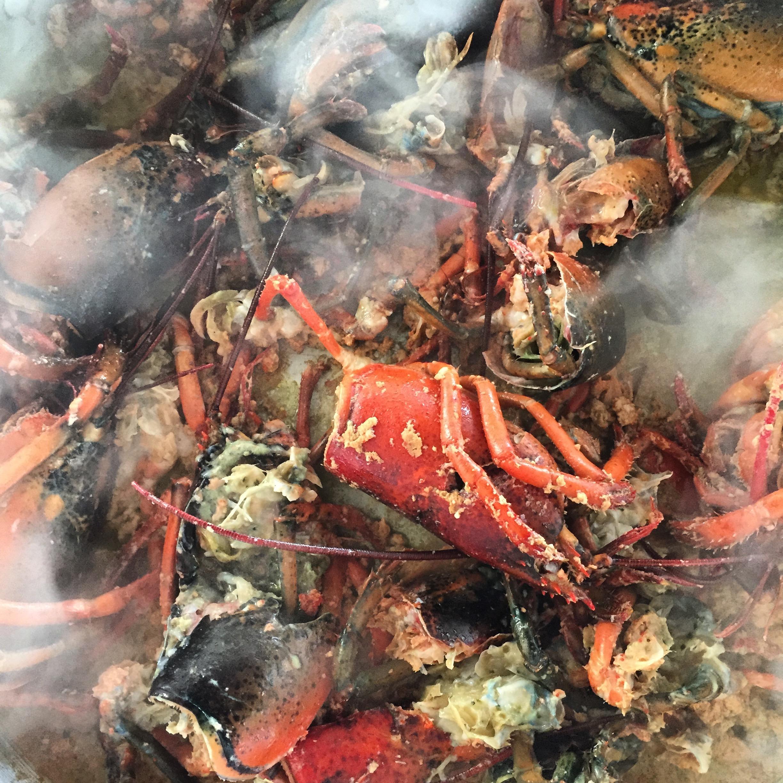 making lobster stock.jpg
