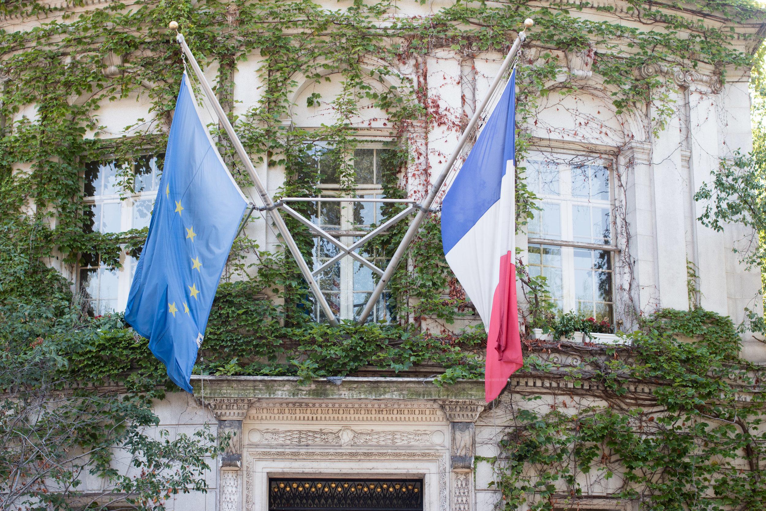 Paris Meets NYC : Albertine