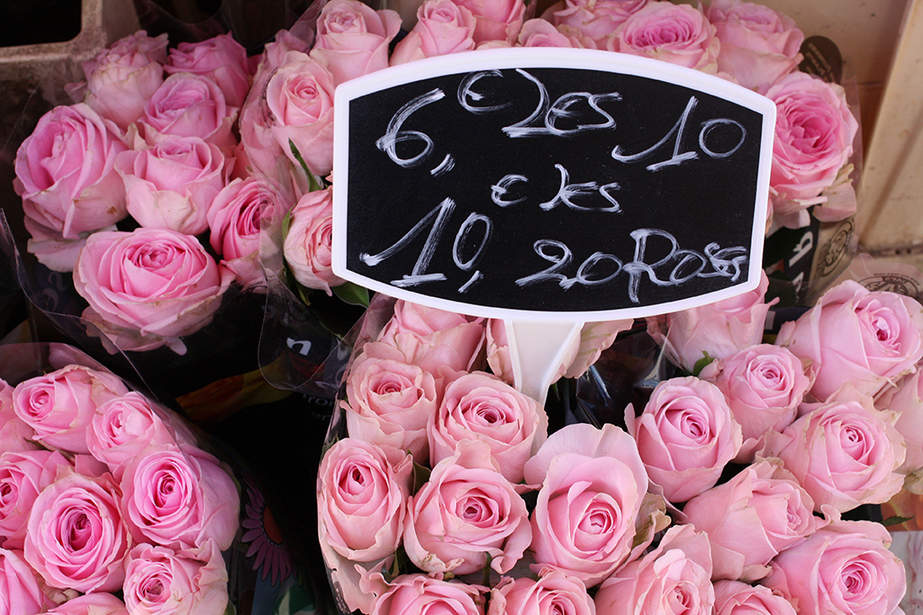 Paris Roses photo by  Rebecca Plotnick