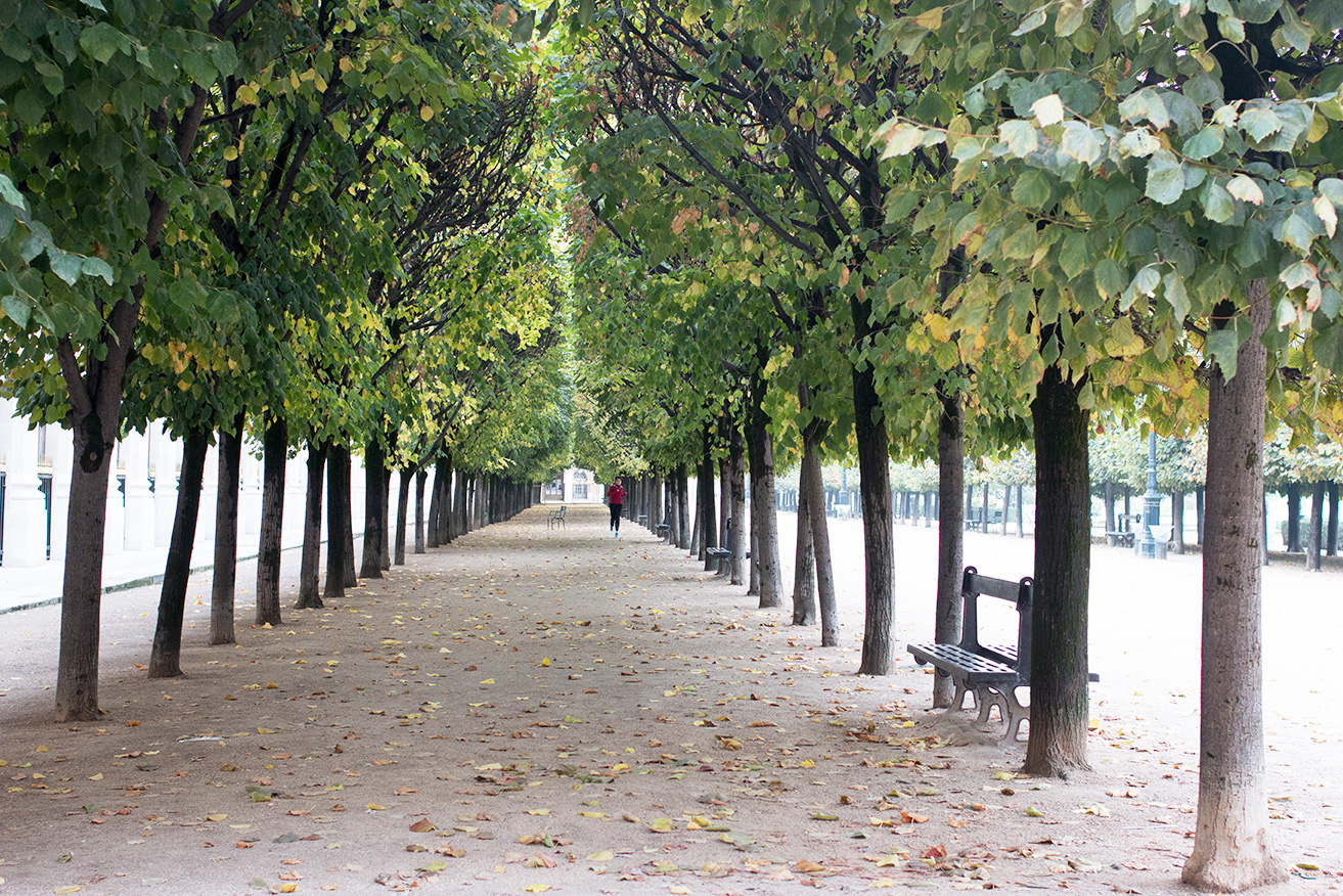 Paris Palais Royal @rebeccaplotnick