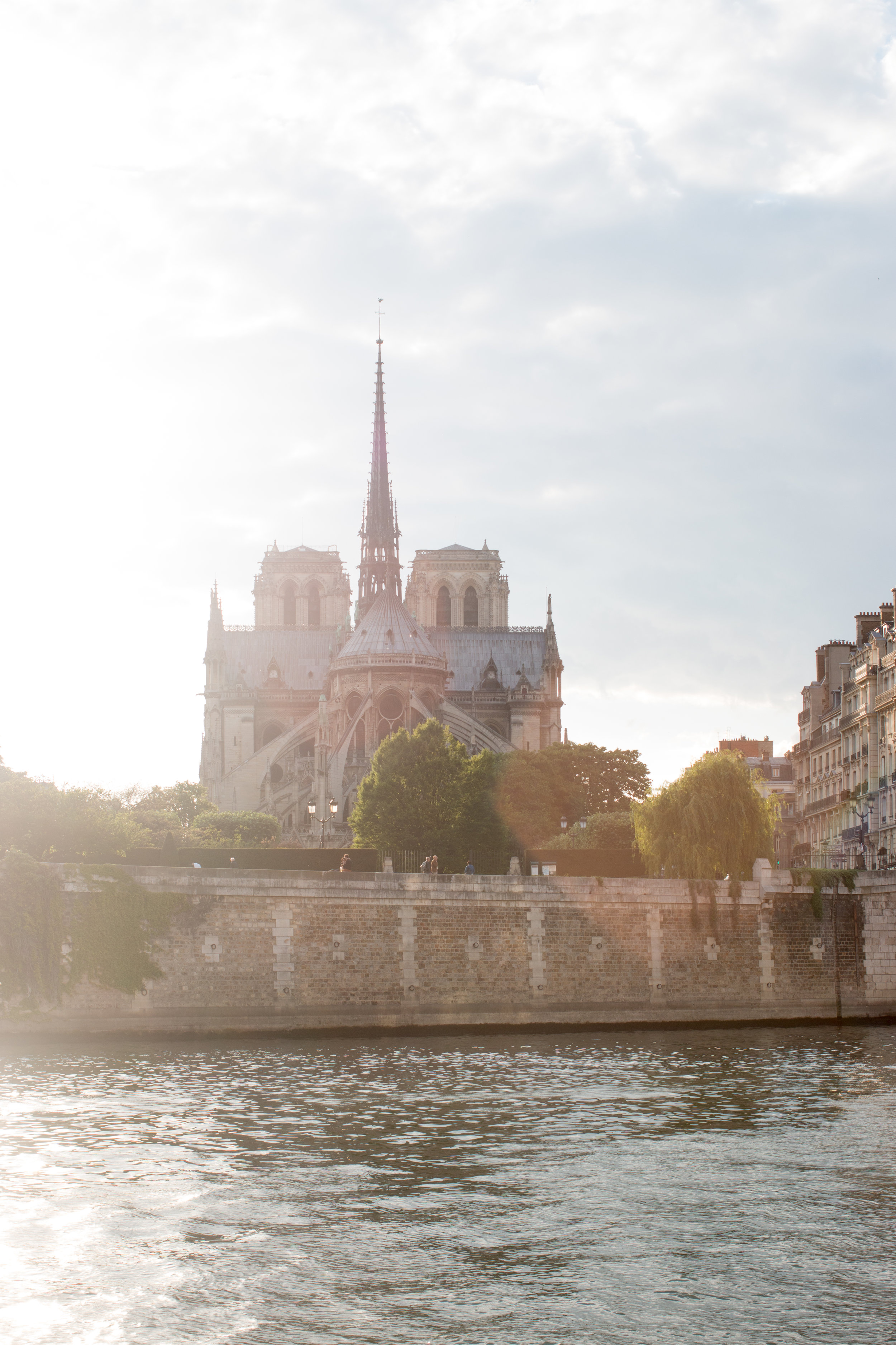 notre dame in the evening light from the seine in paris france by everydayparisian
