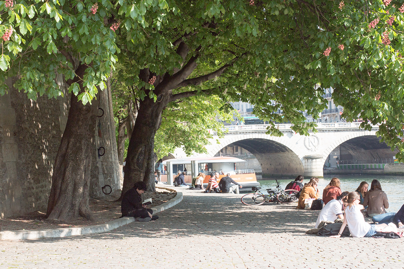 seine sunday strolls in paris france via everyday parisian