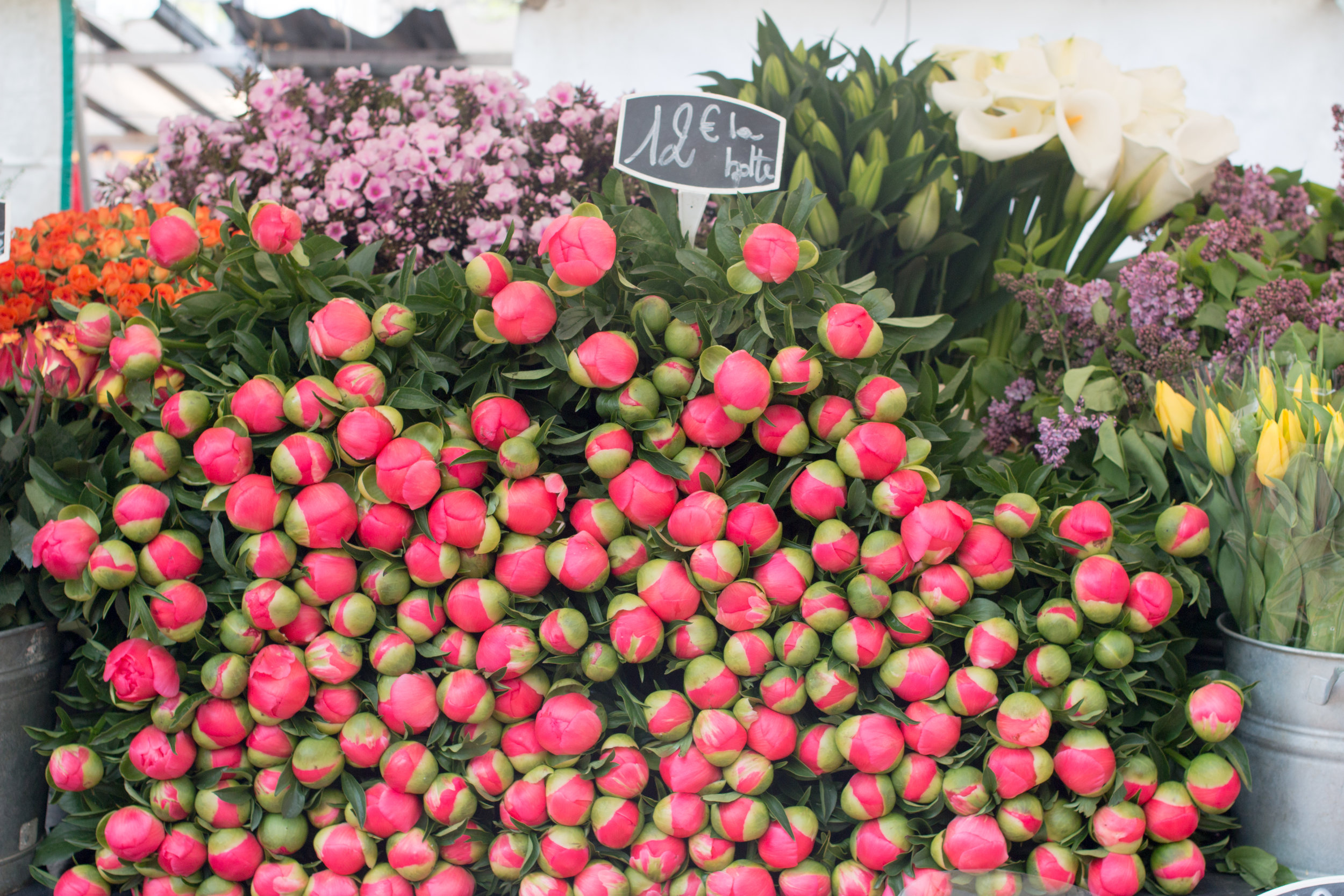 where to buy peonies in paris, france via everyday parisian rebecca plotnick