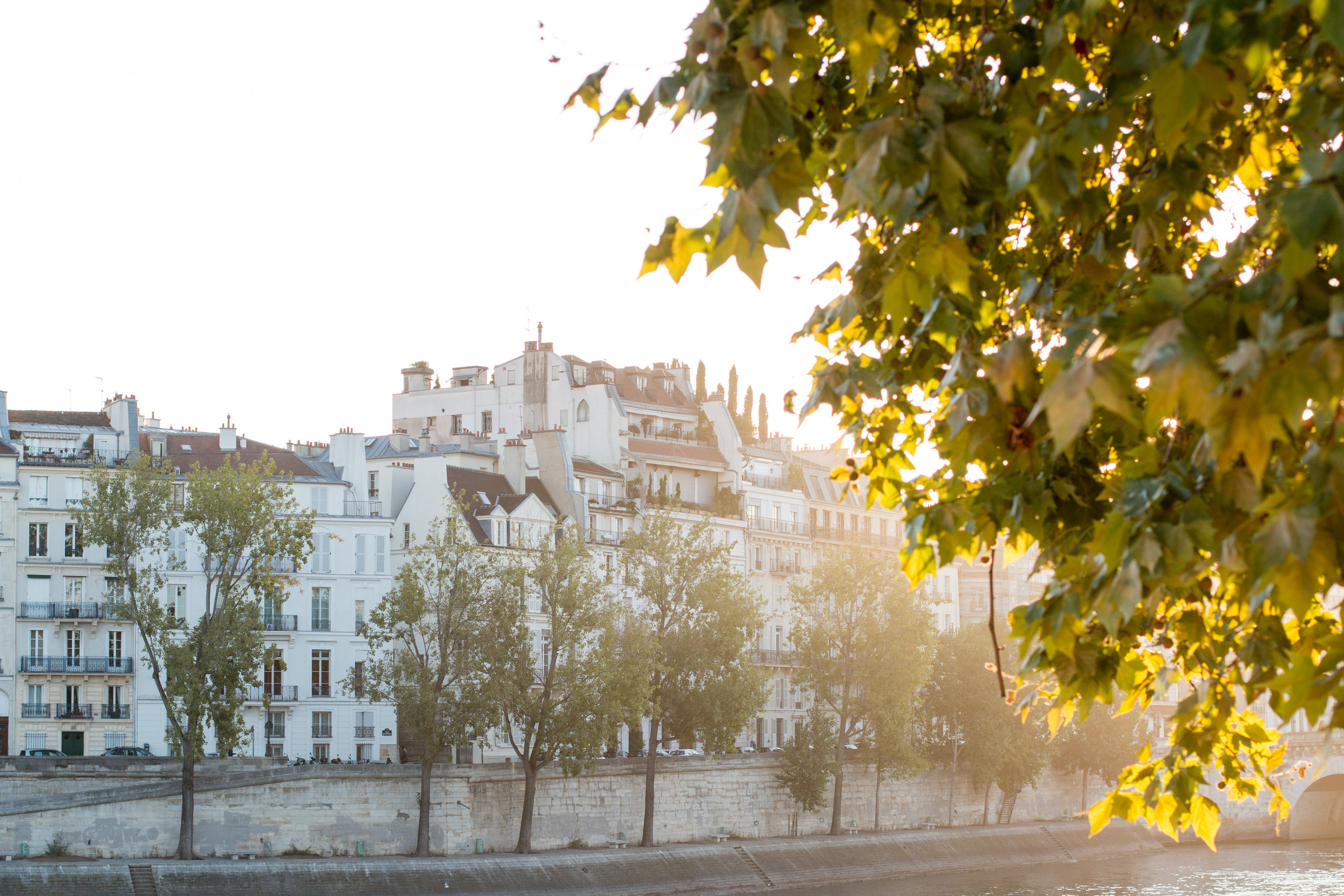 paris France seine morning light