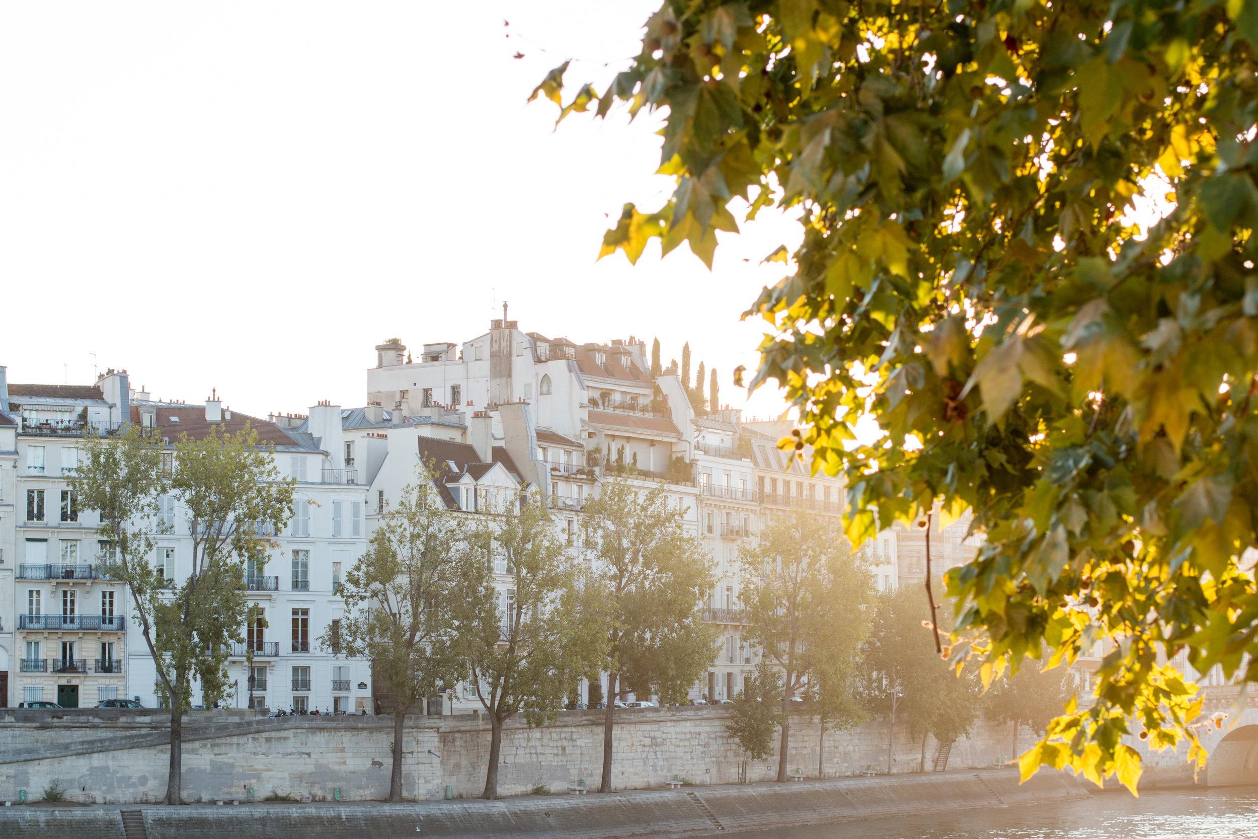 paris France seine morning light