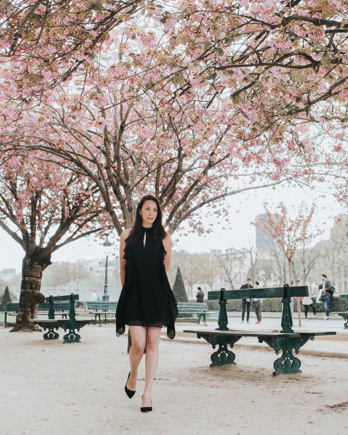 10+places+to+see+the+cherry+blossoms+bloom+in+paris.jpeg