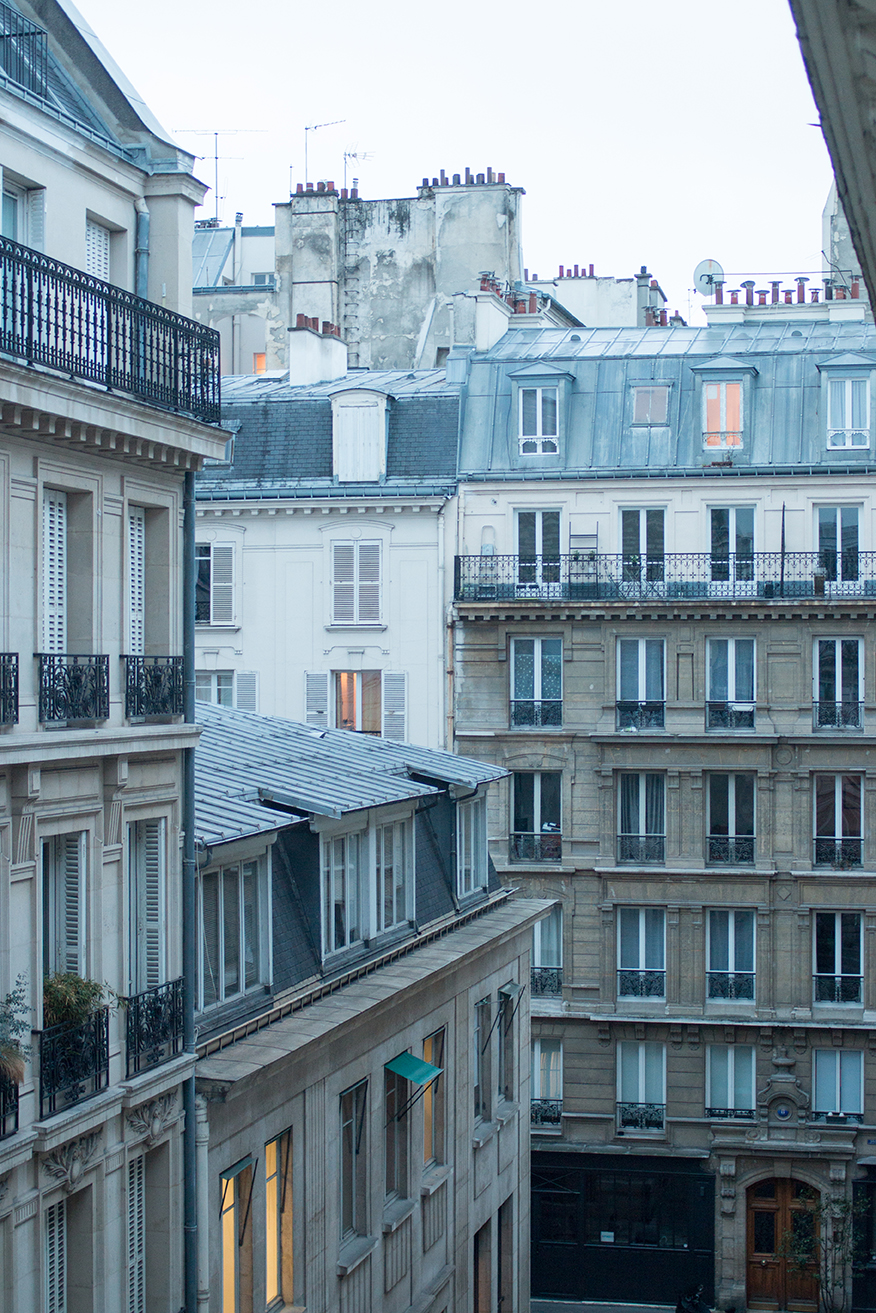 paris rooftop views