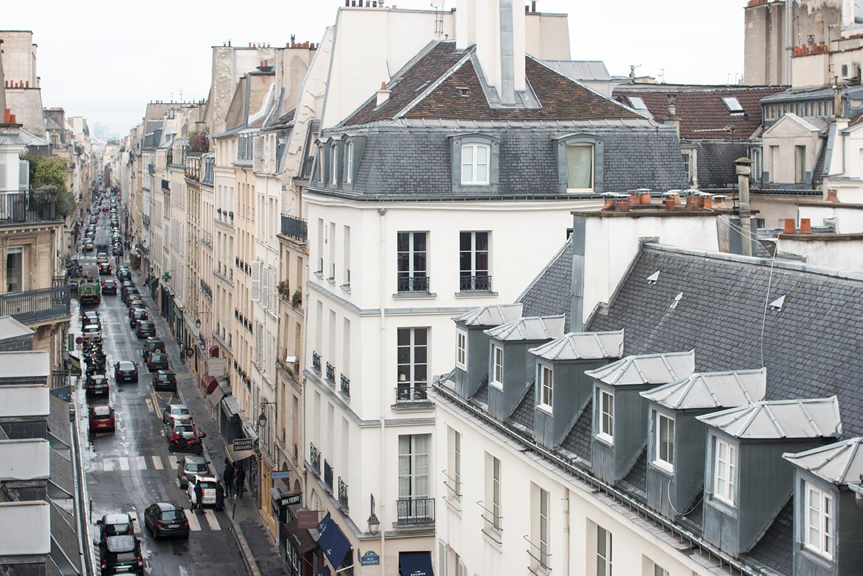 parisian rooftop view left bank