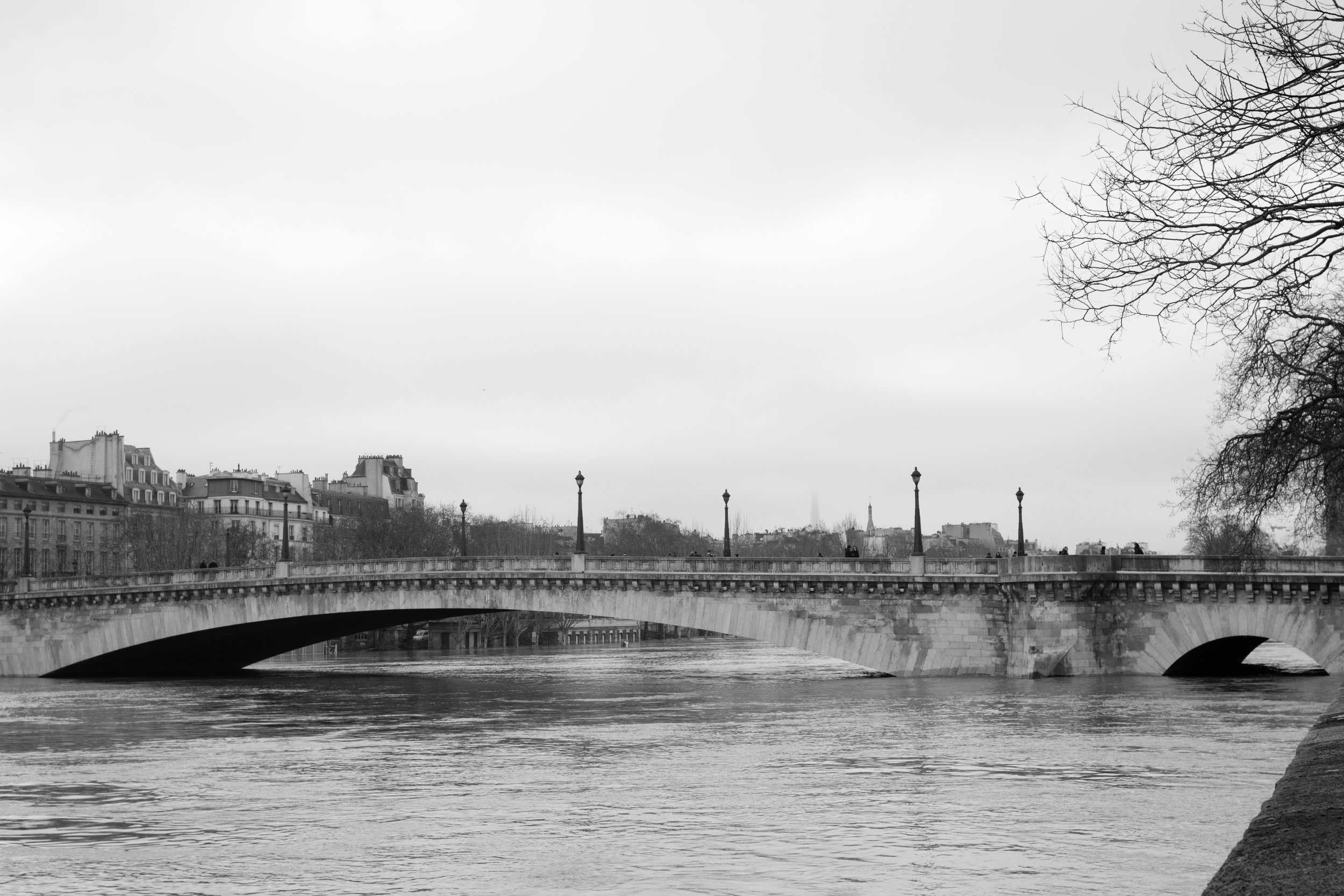 paris france seine photo