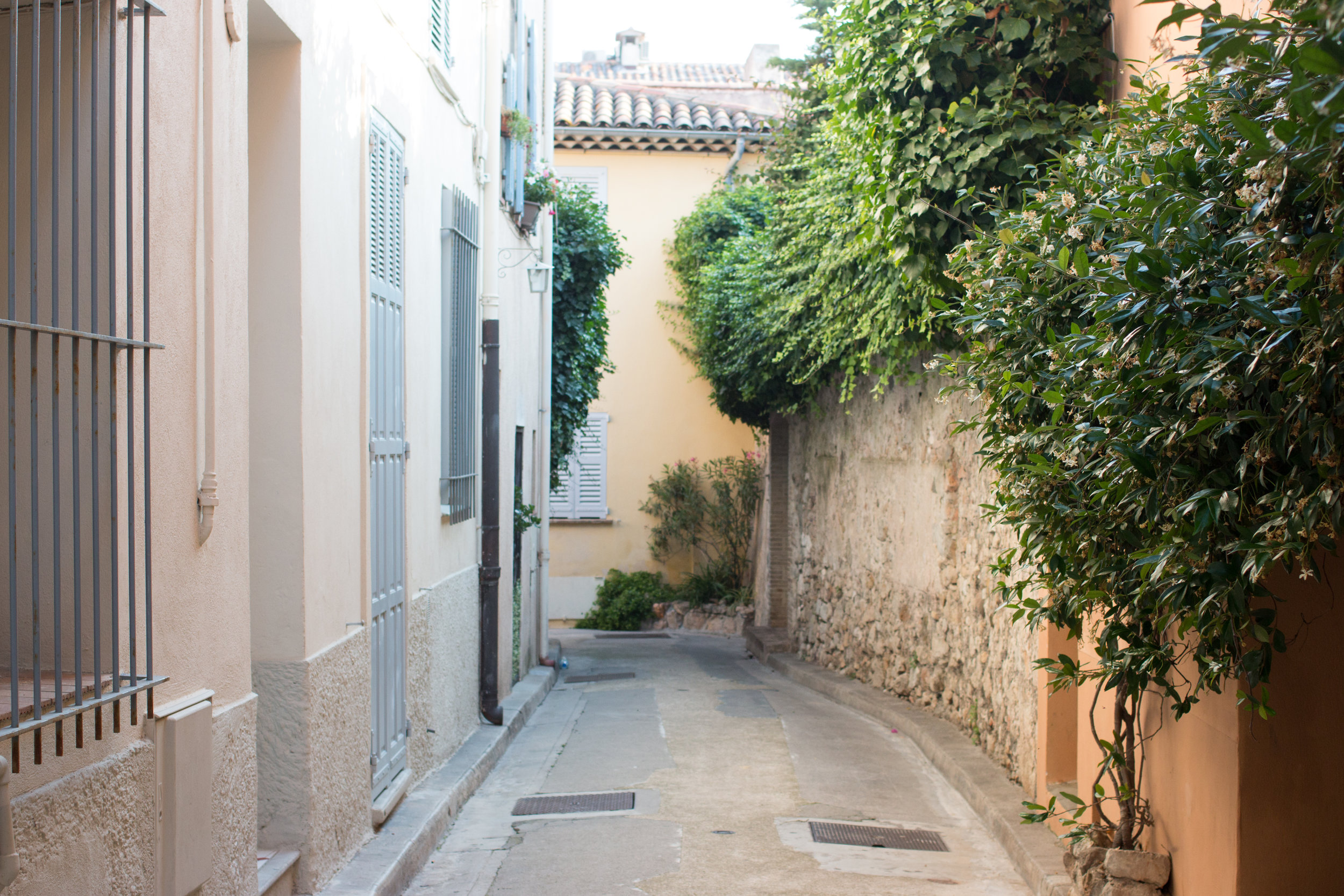 antibes france rebecca plotnick